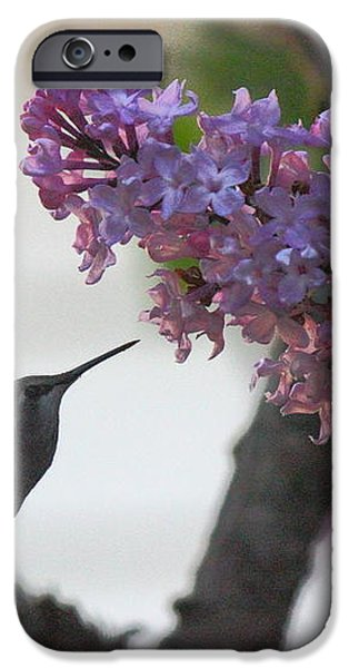 Hummingbird iPhone Case by Tanya Shockman