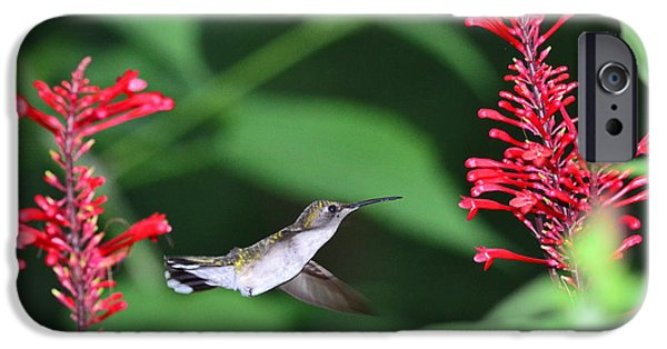 Ruby Garden Jewel iPhone Cases - Hummingbird with Flower Red Suspension iPhone Case by Wayne Nielsen