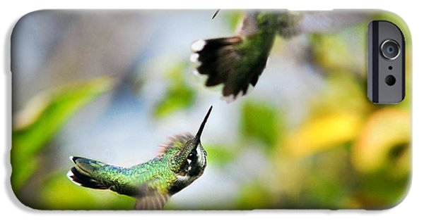 Hummingbird iPhone Cases - Hummingbirds Ensuing Battle iPhone Case by Christina Rollo