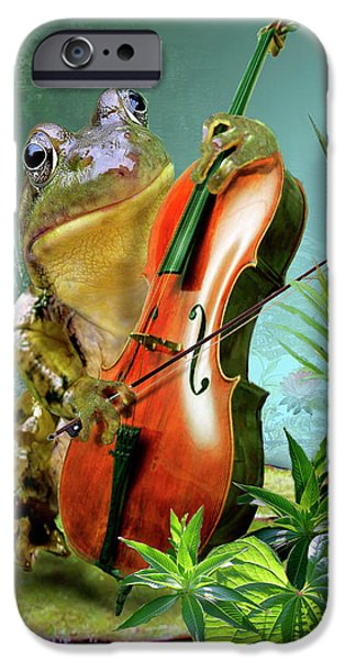 Amphibian iPhone Cases - Humorous scene frog playing cello in lily pond iPhone Case by Gina Femrite