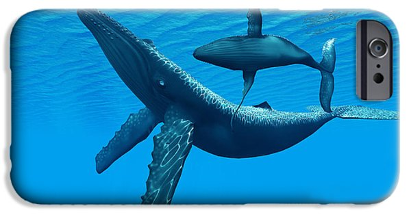 Whale Digital iPhone Cases - Humpback Whale Bonding iPhone Case by Corey Ford