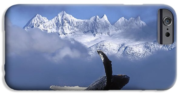 Inside Passage iPhone Cases - Humpback Whale Breaches In Clearing Fog iPhone Case by John Hyde