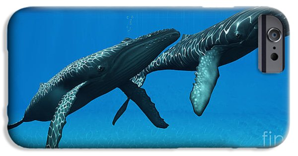 Whale Digital iPhone Cases - Humpback Whales Surfacing iPhone Case by Corey Ford