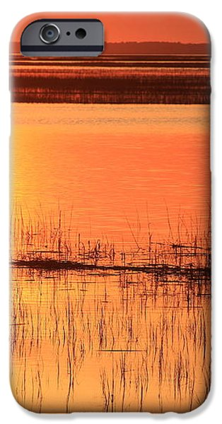 Hunting Island Tidal Marsh iPhone Case by Michael Weeks