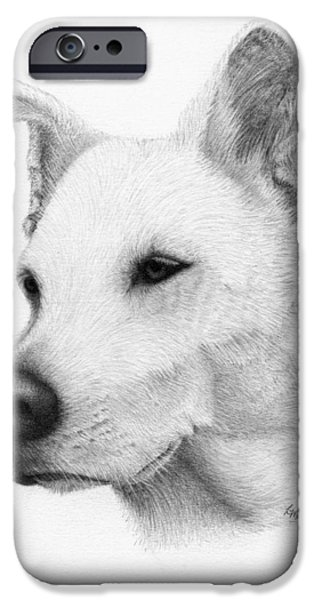 Husky Drawings iPhone Cases - Husky iPhone Case by Lorraine Moen