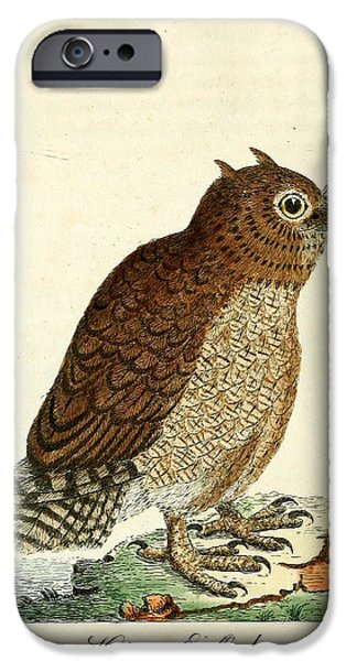Dentist Drawings iPhone Cases - Hutum Owl  iPhone Case by John Latham
