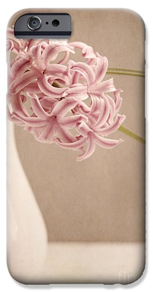 Aromatic iPhone Cases - Hyazinth In A Vase iPhone Case by Priska Wettstein