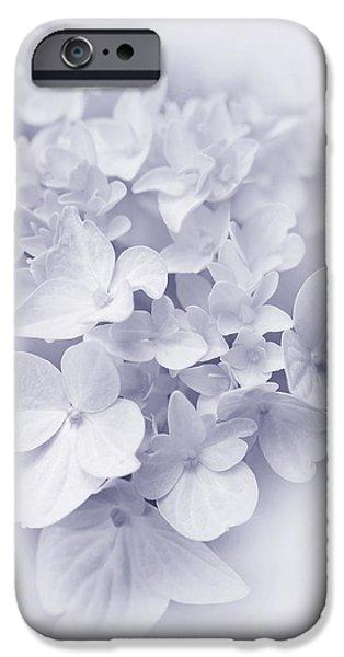 Purple Hydrangeas iPhone Cases - Hydrangea Flowers Lavender Delight  iPhone Case by Jennie Marie Schell