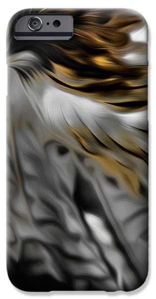 I am Redtail Square iPhone Case by Bill  Wakeley