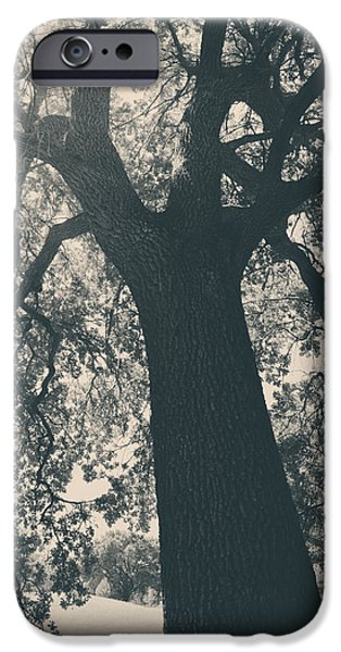 Monotone Photographs iPhone Cases - I Cant Describe iPhone Case by Laurie Search