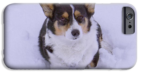 Dogs Digital iPhone Cases - I Do Not Like Snow iPhone Case by Mike McGlothlen