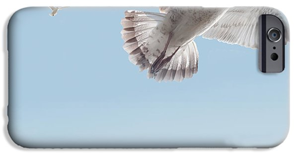 Seagull iPhone Cases - I Just Want To Fly iPhone Case by Bill Cannon