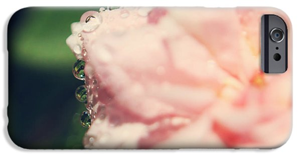 Pink Roses iPhone Cases - I Know I Love You iPhone Case by Laurie Search