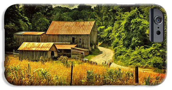 Old Barns iPhone Cases - I Remember It Was In The Summer iPhone Case by Lois Bryan