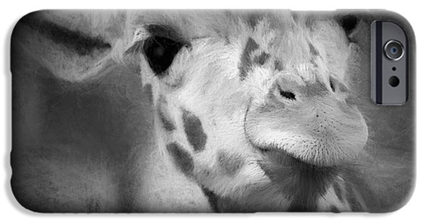 Fury iPhone Cases - I See You iPhone Case by Pennie  McCracken