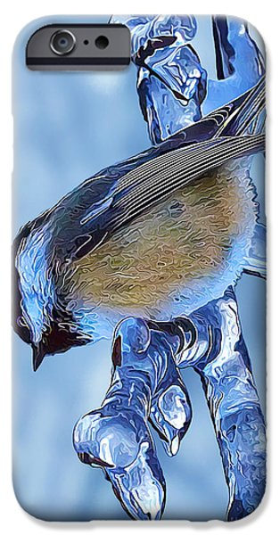 Pastel iPhone Cases - I Spy a Chickadee iPhone Case by Bill Caldwell -        ABeautifulSky Photography