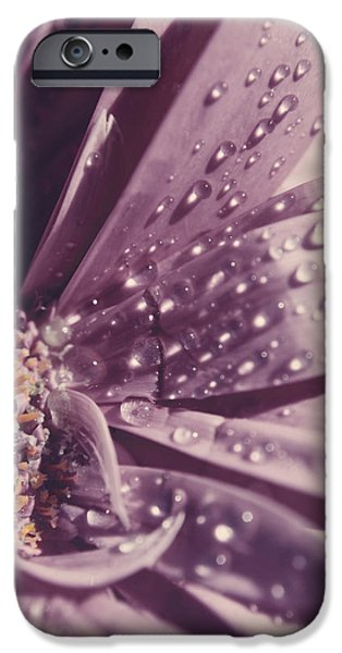 Macro Flower iPhone Cases - I Was Crying iPhone Case by Laurie Search