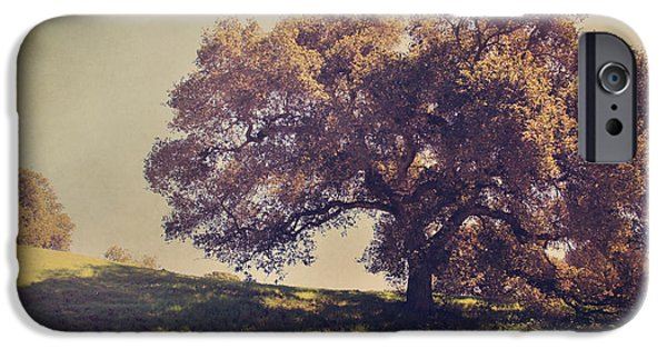 Oak Creek iPhone Cases - I Wish You Had Meant It iPhone Case by Laurie Search