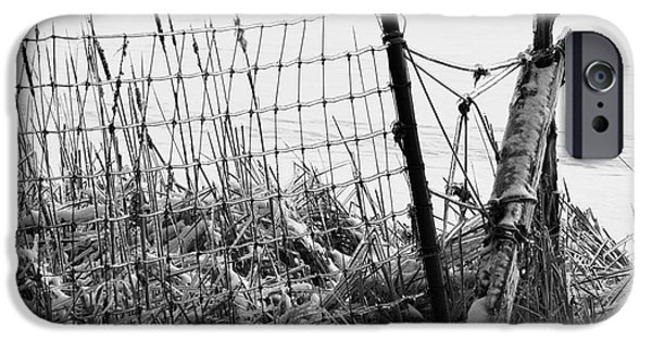 Winter Storm iPhone Cases - Ice coated wire fence and rushes after a winter storm iPhone Case by Louise Heusinkveld