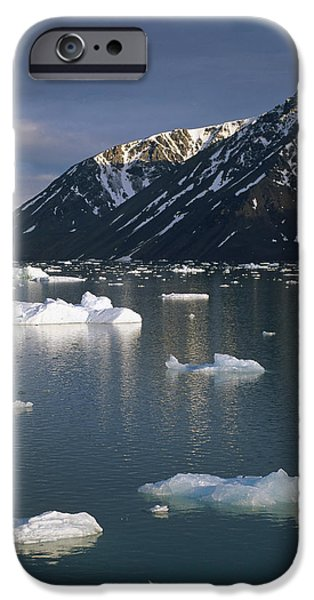 Norway iPhone Cases - Ice Floes In Evening Light Spitsbergen iPhone Case by Tui De Roy