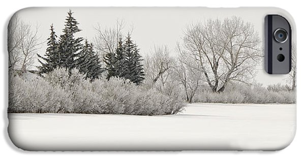 Snow Scene iPhone Cases - Ice Fog Frosting iPhone Case by Dee Cresswell