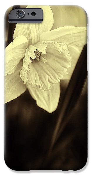 Ice Follies sepia iPhone Case by Erik Brede