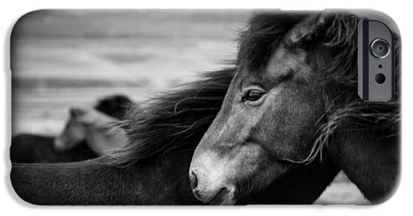 Dave iPhone Cases - Icelandic Horses iPhone Case by Dave Bowman