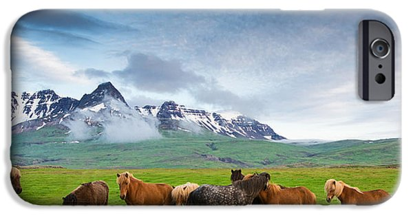 Horse iPhone Cases - Icelandic horses in mountain landscape in Iceland iPhone Case by Matthias Hauser