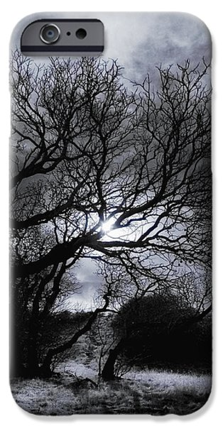 Ghost Story iPhone Cases - Ichabods Pathway iPhone Case by Donna Blackhall