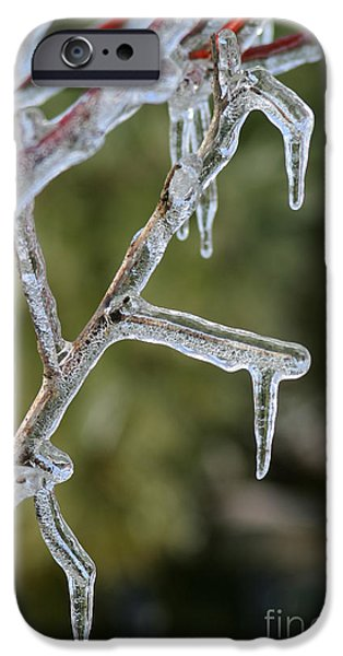 Wintertime iPhone Cases - Icy Branch-7506 iPhone Case by Gary Gingrich Galleries