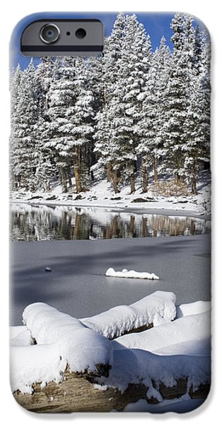 Snow Scene iPhone Cases - Icy Cold iPhone Case by Chris Brannen