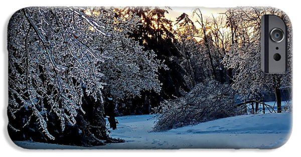 Winter Storm Pyrography iPhone Cases - Icy Sunset iPhone Case by Irfan Gillani
