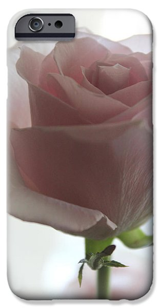 Abstracts iPhone Cases - If I Am His iPhone Case by  The Art Of Marilyn Ridoutt-Greene