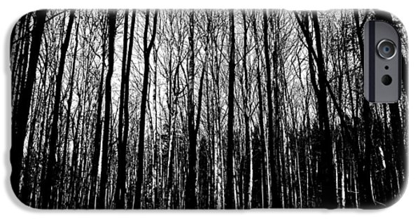 Eerie iPhone Cases - If You Go Into The Woods Today iPhone Case by Debbie Oppermann