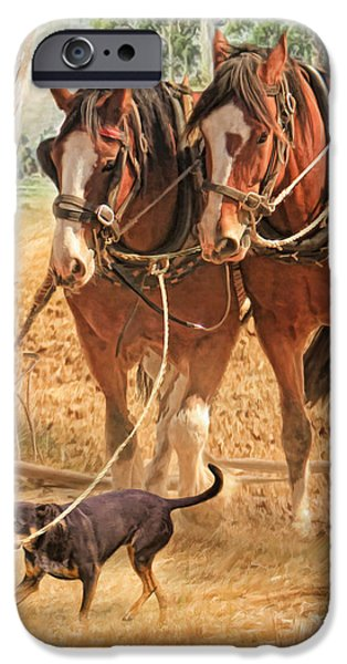 Recently Sold -  - Rural iPhone Cases - If You Want The Job Done iPhone Case by Trudi Simmonds