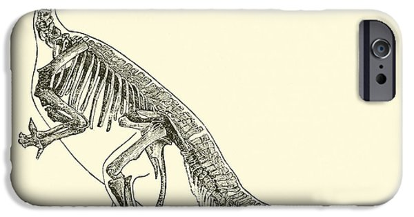 Skeleton Drawings iPhone Cases - Iguanodon iPhone Case by English School