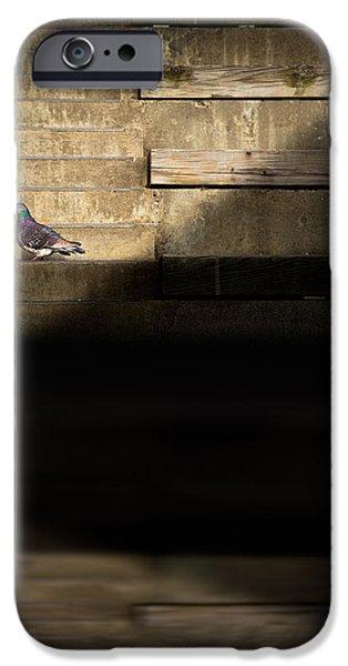 il piccolo guardiano iPhone Case by Bob Orsillo