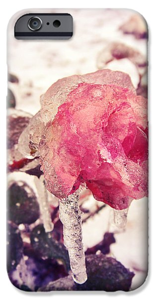 Fairy Hearts Pink Flower iPhone Cases - Im frozen.. iPhone Case by Victoria  Kostova