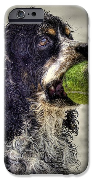 Dog With Tennis Ball iPhone Cases - Im Ready to Play iPhone Case by Benanne Stiens