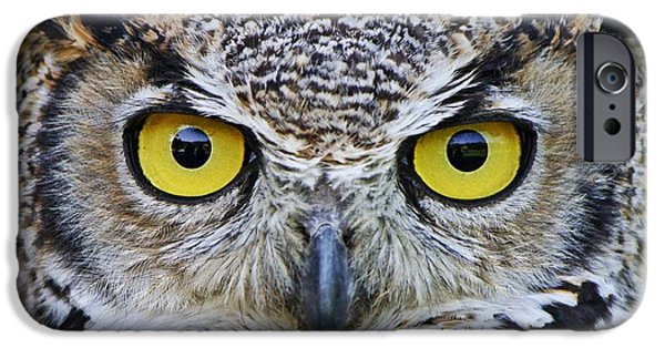 Disc iPhone Cases - Im watching you iPhone Case by Heather King