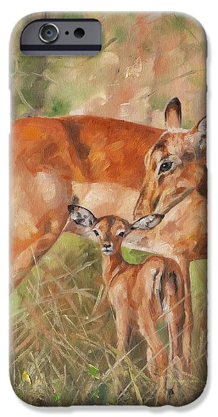 Young Paintings iPhone Cases - Impala Antelop iPhone Case by David Stribbling