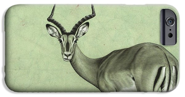 African Animal Drawings iPhone Cases - Impala iPhone Case by James W Johnson