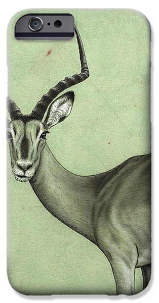 Impala iPhone Case by James W Johnson