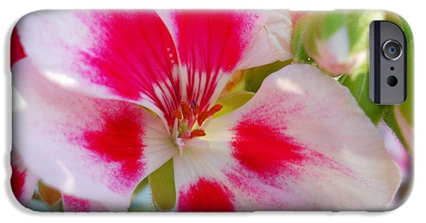 Fabulous Gifts iPhone Cases - Imperial Beauty iPhone Case by Ramona Matei