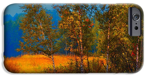 Autumn Scenes Photographs iPhone Cases - Impressionistic Autumn iPhone Case by Jenny Rainbow