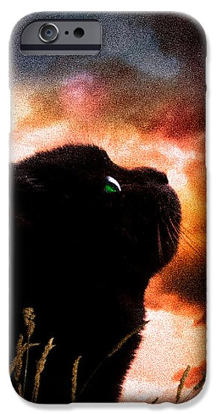 In a cats eye all things belong to cats.  iPhone Case by Bob Orsillo