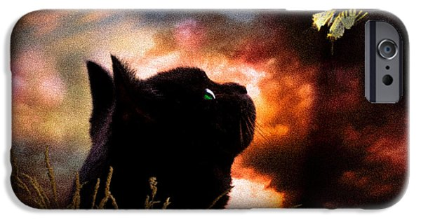 Bob Cats iPhone Cases - In a cats eye all things belong to cats.  iPhone Case by Bob Orsillo