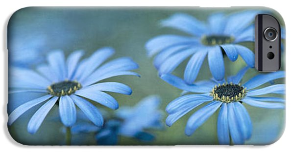 Flora Photographs iPhone Cases - In A Corner Of A Garden iPhone Case by Priska Wettstein