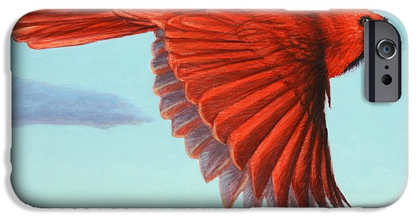Flight Paintings iPhone Cases - In Flight iPhone Case by James W Johnson