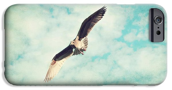 Animals Photographs iPhone Cases - In Flight iPhone Case by Sylvia Cook
